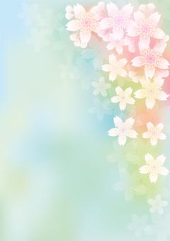 Blooming flowers 266