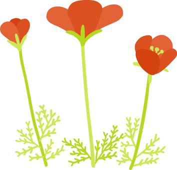 Wandering cute hand-painted red poppy