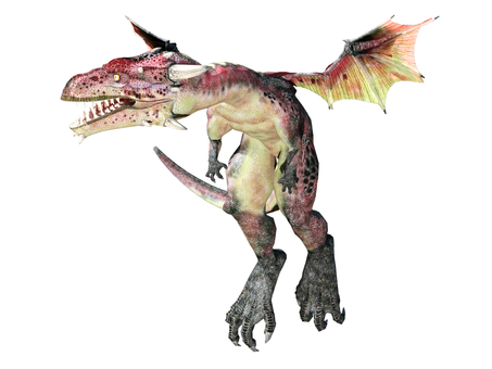 Red small dragon
