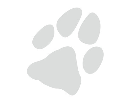 Dog footprint gray