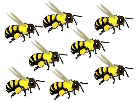A group of bees
