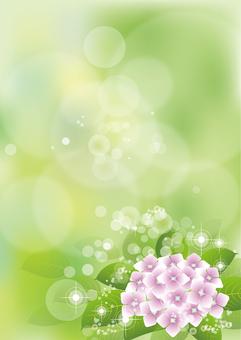 Green & hydrangea 18