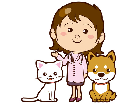 Dog and cat and veterinarian