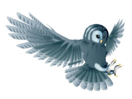 Fly 梟 06