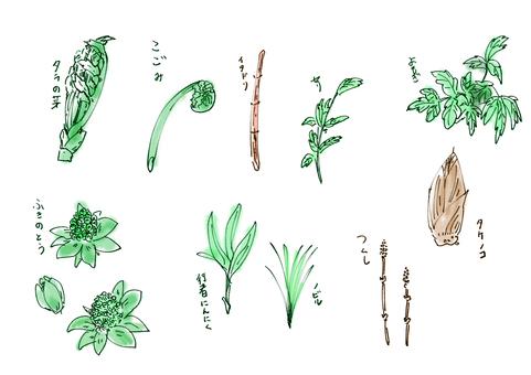 Spring vegetables 10 kinds + color name