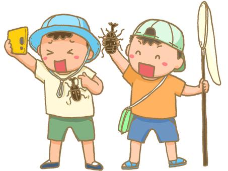 곤충 수집