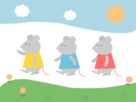 Mouse Set Plain