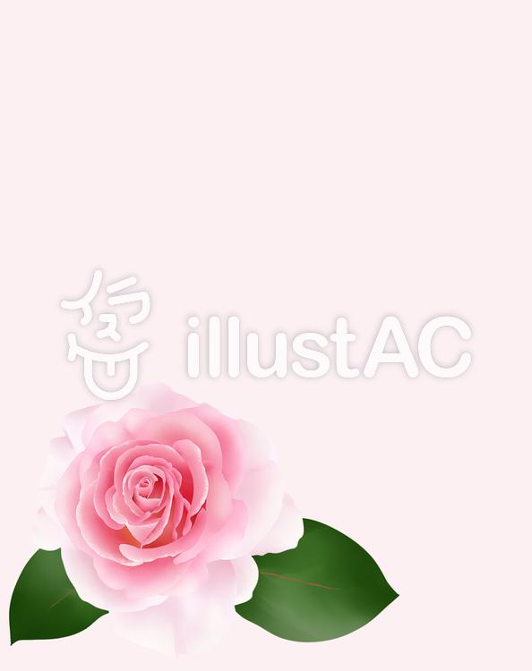 ピンク色の薔薇の花フレーム・3