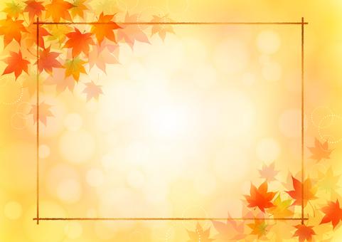 Fall image material 139