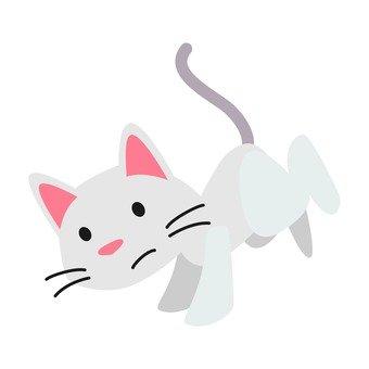 고양이 - 착지하는 고양이