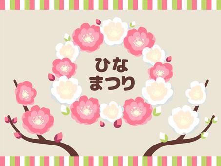 Illustration of the double flower flowers _ Hinamatsuri