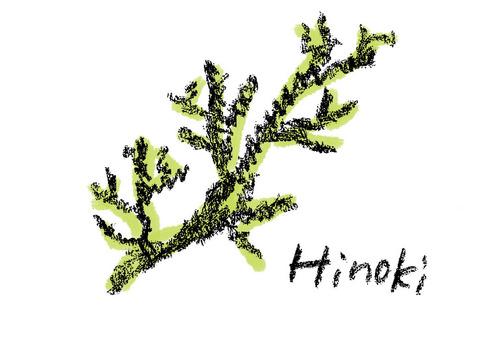 Japanese cypress