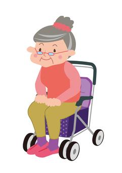 Grandma sitting on a silver car