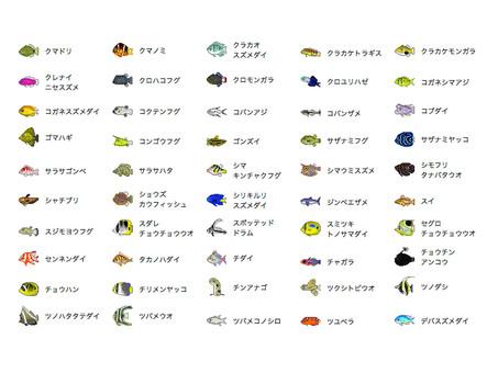 Saltwater fish icon set 3