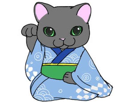 Kimono - inviting cat