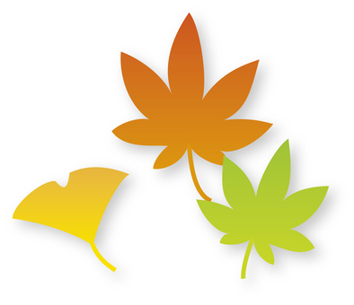 Maple & amp; leaves