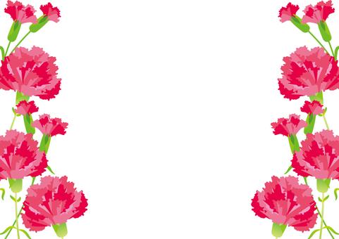 Carnation side