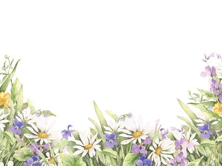 Flower frame 98 - Flower frame of spring florets