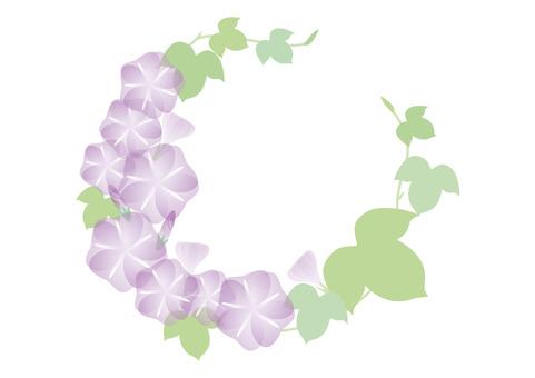 牽牛花圈子紫色
