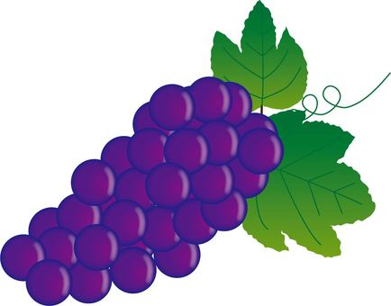 Grape ~ type F ~
