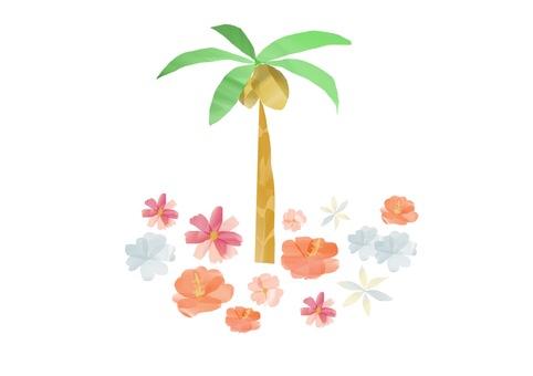 Summer ☆ South Island