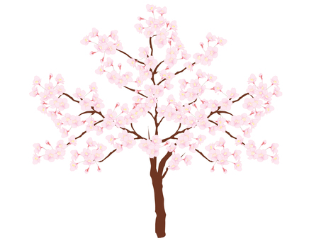 Cherry tree _ 1 book