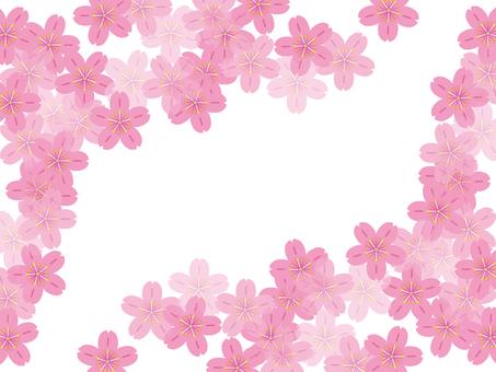 Background - Sakura 56