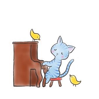 Piano cat 33