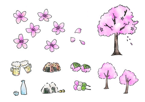 벚꽃 · 꽃놀이
