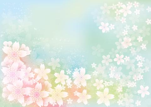 桜 flowers blooming 263