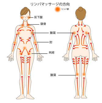Lymphatic massage direction body