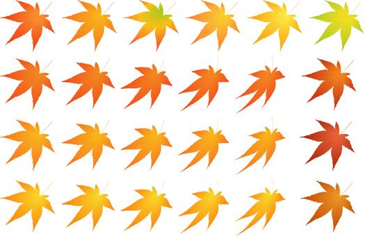 Various autumn colors