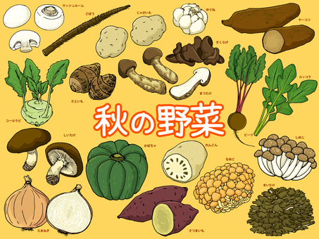 Autumn vegetables / Ayakaji