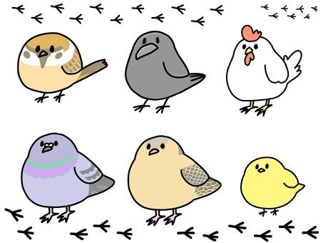 ゆるい鳥セット
