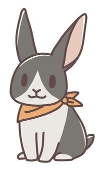 Scarf Rabbit 06