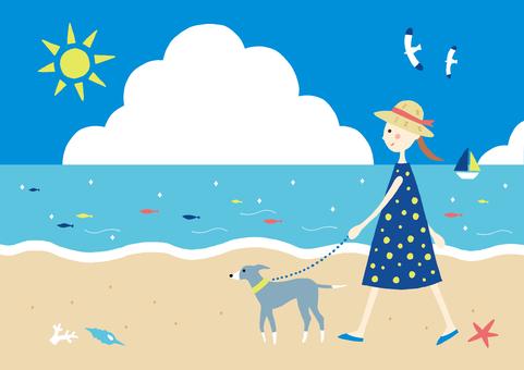 犬の散歩夏