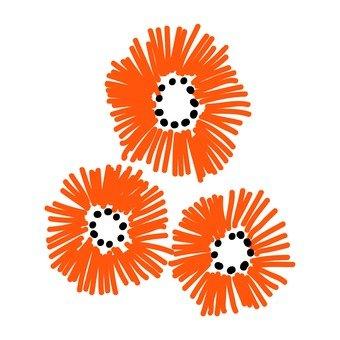 Scandinavian flowers (oranges, plural)