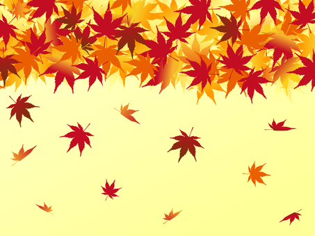 Japanese style material Autumn leaves Background maple