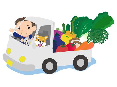 Vegetable in truck