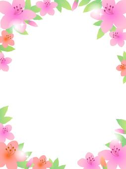 70415, azalea, frame length 1