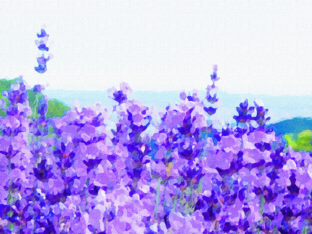 Oil painting style lavender field