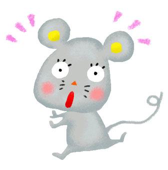 Surprised rat