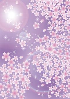 벚꽃 눈보라 그 4
