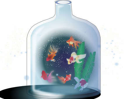 Aquarium 16