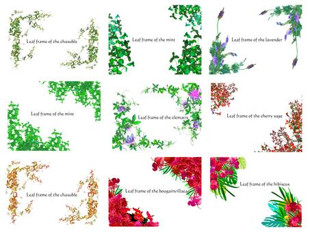 Flower frame set
