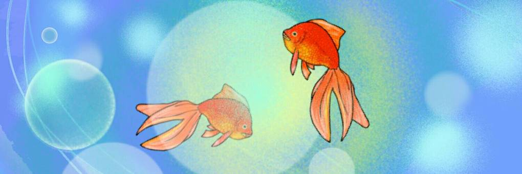 金魚 背景