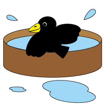 Crow 's row water