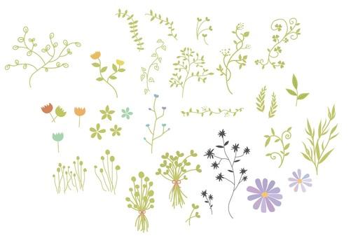 Grass summary