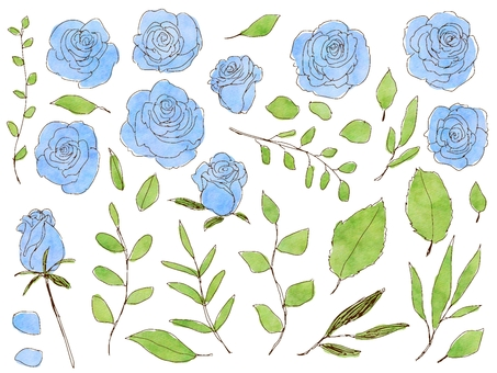 Rose and grass blue