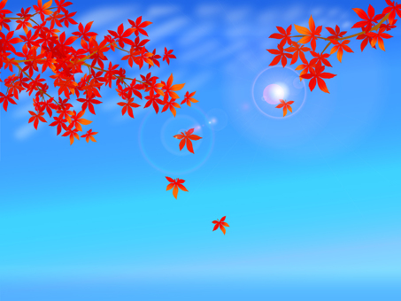 Autumn leaves and Iwashi clouds